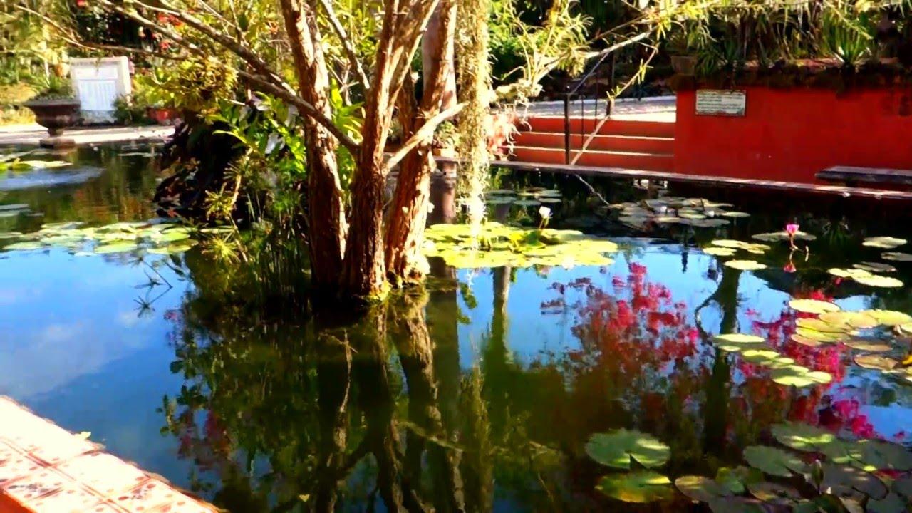 Puerto Vallarta Botanical Gardens