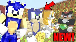 Minecraft Sonic The Hedgehog  NEW SONIC HILL ZONE HALL 119