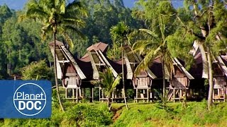 Indonesia. Toraja Village   Tribes \\u0026 Ethnic Groups