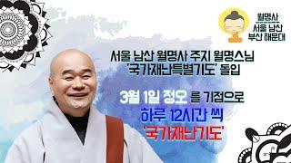 서울 남산 월명사 주지 월명스님 '국가재난특별기도' 돌…
