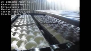 оборудование для производства лотка фруктов (бугорчатые прокладки)(, 2016-10-11T03:02:40.000Z)