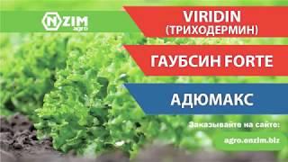 Гаубсин, Триходермин, Адюмакс. Обработка салата по листу