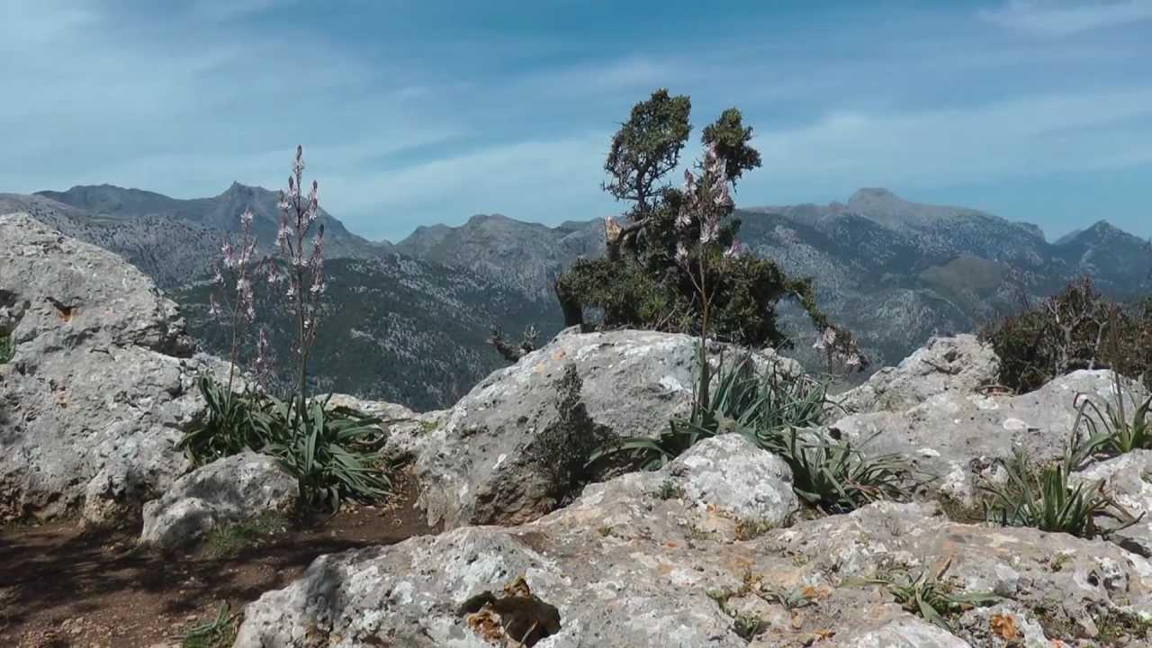 Mallorca - Castell d´Alaro´ - YouTube