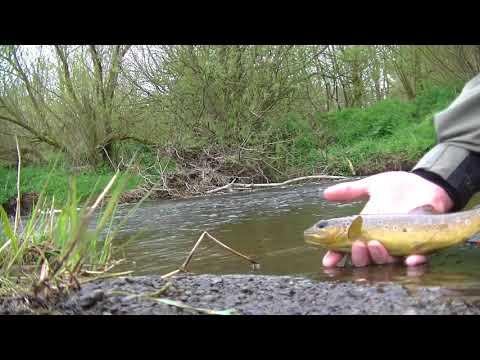 Euro nymphing River Braid 5/5/18