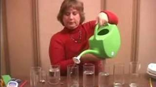How to Make Musical Instruments for Kids : Make a Homemade Xylophone Using Wine Glasses & Water