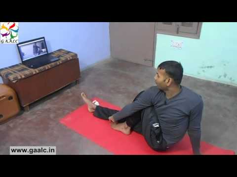 Yoga Lessons Online Training Skype Classes Yoga Guru trainer instructors India Yoga teacher