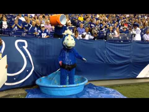 Colts Mascot ALS Ice Bucket Challenge