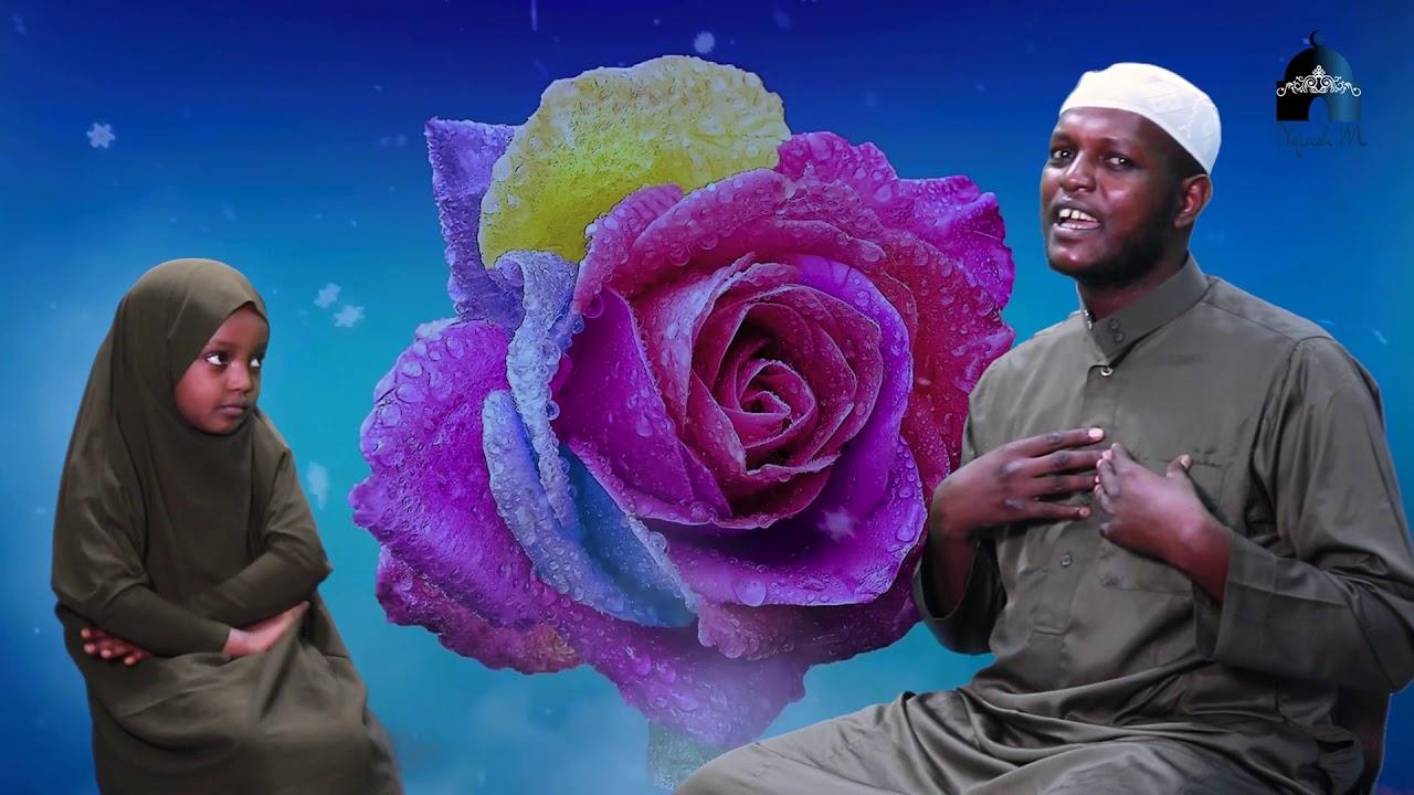 Download Hilwaa najjash fi najjaash mohammad