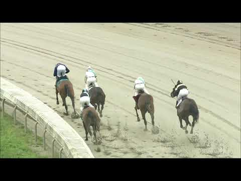 video thumbnail for MONMOUTH PARK 08-29-20 RACE 7