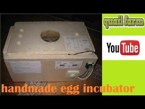 diy-homemade-incubator-for-10-us-dollars