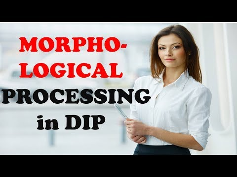 MORPHOLOGICAL ALGORITHMS IN DIP