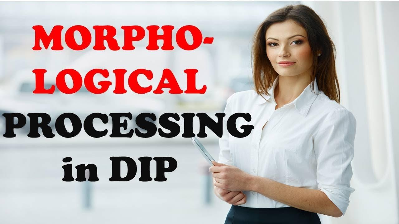MORPHOLOGICAL ALGORITHMS IN DIP