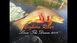 Bighorn River: Livin' The Dream - Summer 2019