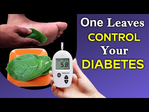 One Green Leaves Control Your Diabetes | Health and Beauty