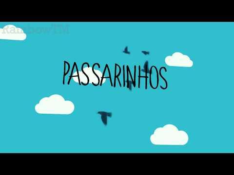 Tipografia #2 - Emicida - Passarinhos ft. Vanessa da Mata