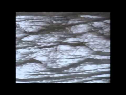 Miasma and the Carousel of Headless Horses - Manticore mp3