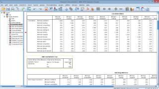 Principal Component Analysis on SPSS
