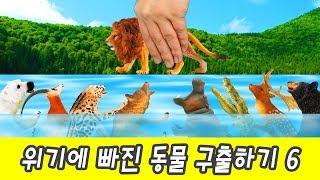 한국어ㅣ위기에 빠진 동물 구출하기 6! 어린이 동물 만화,  동물 이름 외우기ㅣ꼬꼬스토이