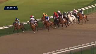 Vidéo de la course PMU PRIX LUTHIER