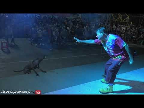 Download San Pedro masahuat : Show de cocolito y Don Chepe