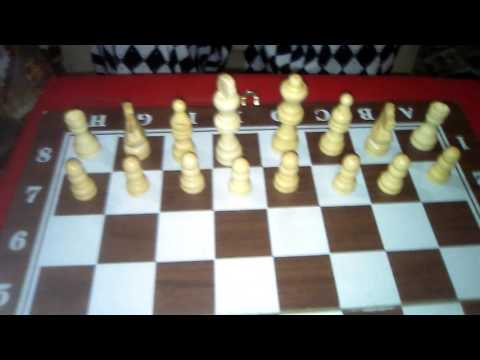 How to play chess ( And the names of the players of chess)