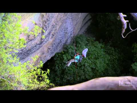 Surveying Gorongosa's Biodiversity | HHMI BioInteractive Video