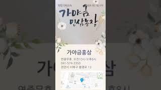 가야금홍삼 홍보영상 제작 연습