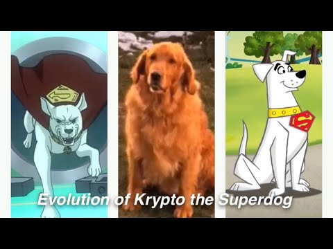 Evolution of Krypto the Superdog in Movies, TV, and Cartoons in 11 Minutes (2020)