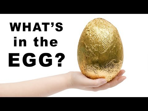 What's Inside this Egg?
