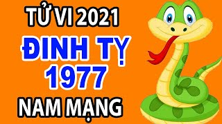 Xem Tử Vi 2021 Tuổi Đinh Tỵ 1977 Nam Mạng Đầy Đủ Về Tài Lộc - Sức Khỏe - Gia Đạo - Tình Duyên