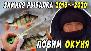 Зимняя Рыбалка 2019 2020 продолжается Ловля окуня на мормышку на опарыша и репей