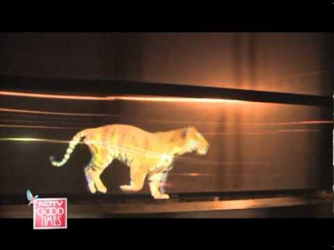 Save Tiger Campaign Promo By Vineesh Edakkara