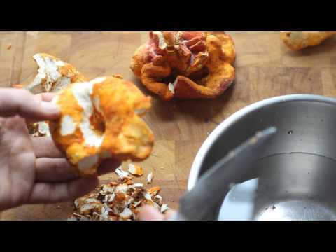 Cleaning lobster mushrooms and saving the trim