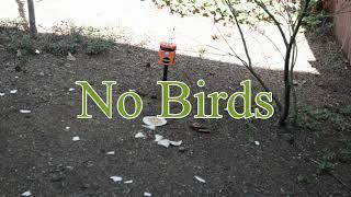 Bird Repeller
