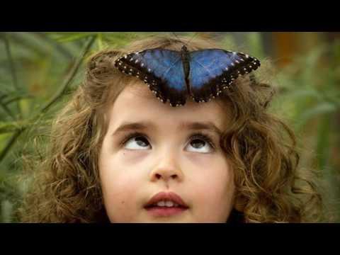 "Caterpillar Kills Atheism. Digests It. ""Liquidates it"", says Real Science Radio"