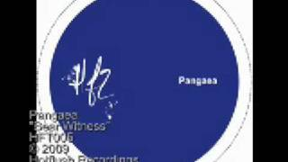 Pangaea - Bear Witness - HFT005 thumbnail