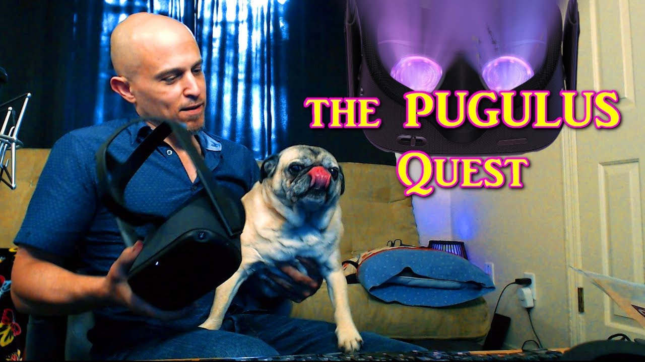 Do Pugs Like VR? New Features Coming to the Oculus Quest!