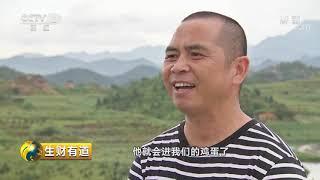 《生财有道》 20191014 小小鸡蛋里的财富故事  CCTV财经