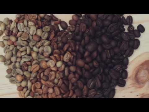 Bridgehead ~ Our Coffee Craft