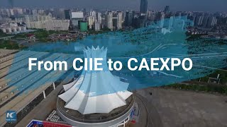 From CIIE to CAEXPO, overseas exhibitors tap further into Chinese market
