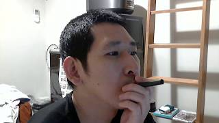 無煙タバコを吸ってみた【ゼロスタイル・スティックス・スヌース】