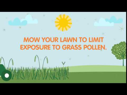 Summer Allergies – Grass and Grass Pollen Allergies | ZYRTEC® Allergy