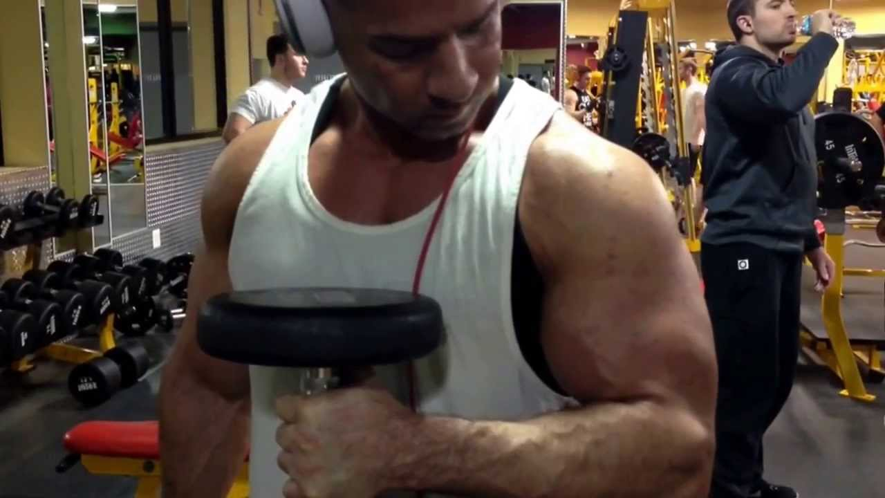 Mike The Situation Biceps