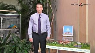 видео Серпухов: новостройки в Серпухове, жилые комплексы и дома, квартиры в новостройках Серпухова от застройщика
