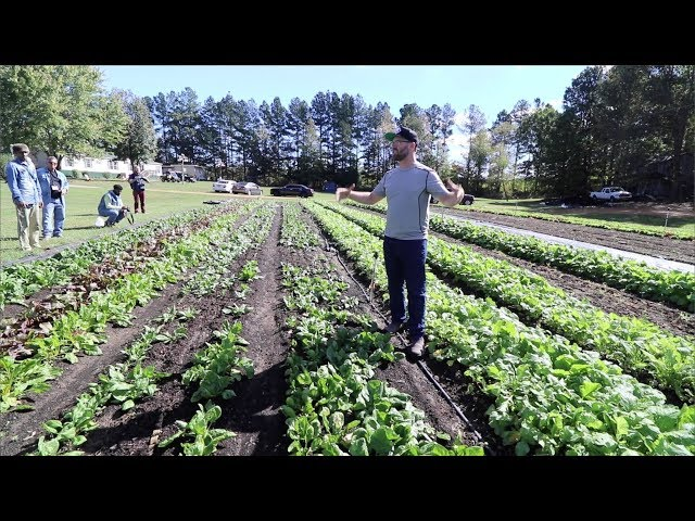 MARKET GARDENING 101 - Why 30 inch beds?