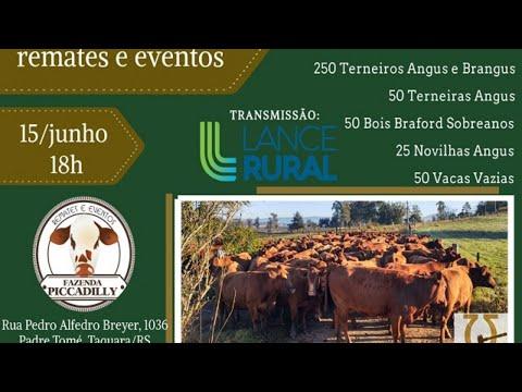 Remate Fazenda Piccadilly – Unidos pela Pecuária