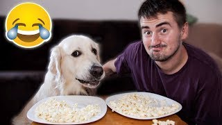 Super Funny Popcorn Eating with My Cute Dog Bailey [Try Not To Smile]