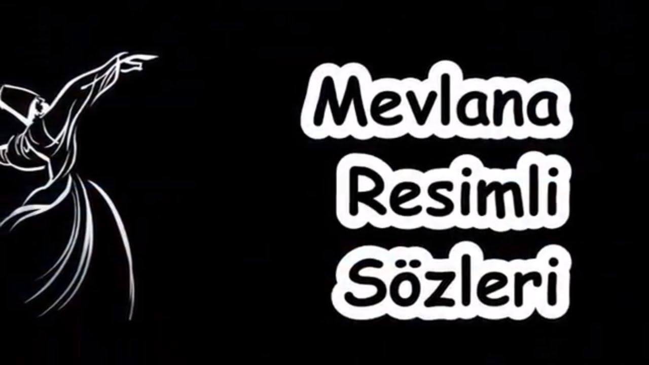Zeynep Ekmen İle Parti Zımbırtıları 'na Dair 31