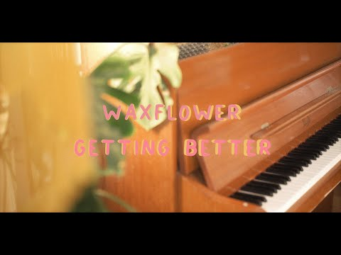 Waxflower - Getting Better (Acoustic)