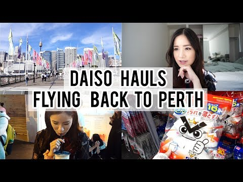 Daiso Haul | Flying Back Home